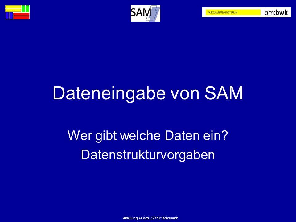 Abteilung A4 des LSR für Steiermark Dateneingabe von SAM Wer gibt welche Daten ein? Datenstrukturvorgaben