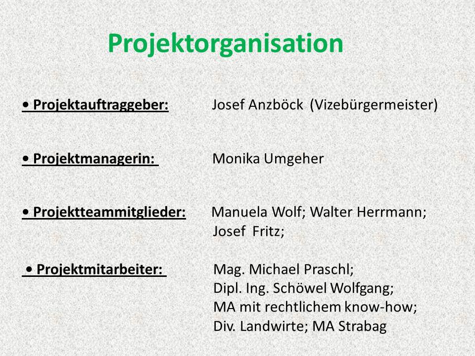 Projektorganisation Projektauftraggeber: Josef Anzböck (Vizebürgermeister) Projektmanagerin: Monika Umgeher Projektteammitglieder: Manuela Wolf; Walter Herrmann; Josef Fritz; Projektmitarbeiter: Mag.