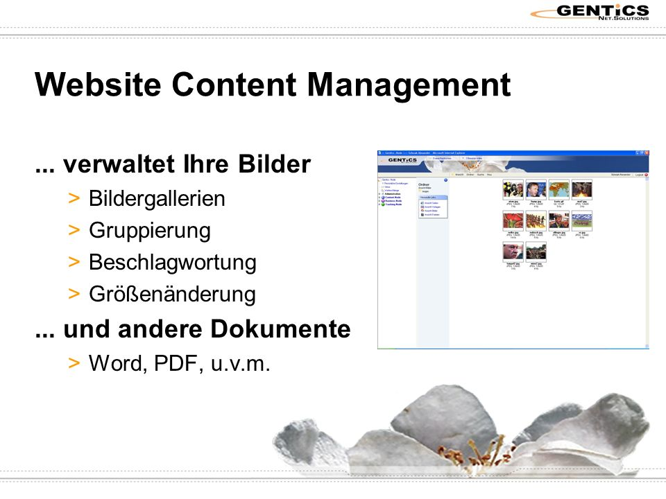 Website Content Management...