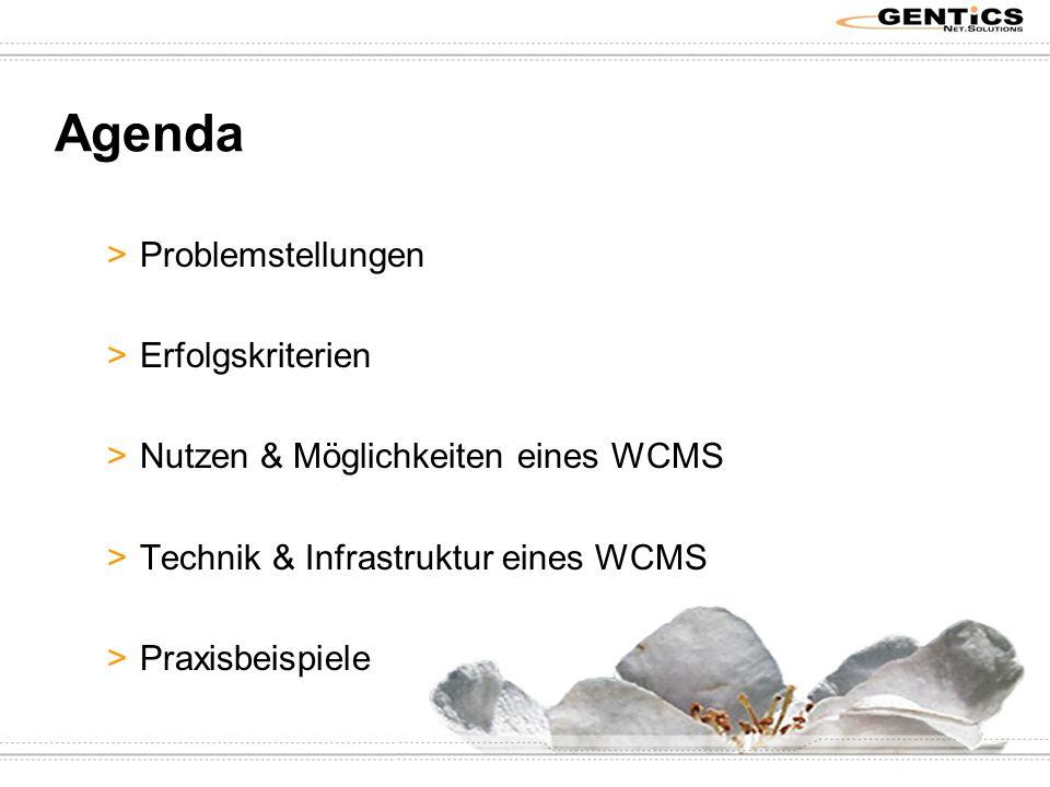 Agenda >Problemstellungen >Erfolgskriterien >Nutzen & Möglichkeiten eines WCMS >Technik & Infrastruktur eines WCMS >Praxisbeispiele