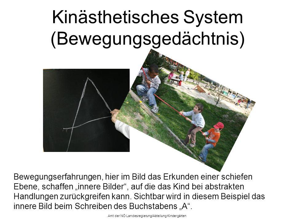 Kinästhetisches System (Bewegungsgedächtnis) Bewegungserfahrungen, hier im Bild das Erkunden einer schiefen Ebene, schaffen innere Bilder, auf die das