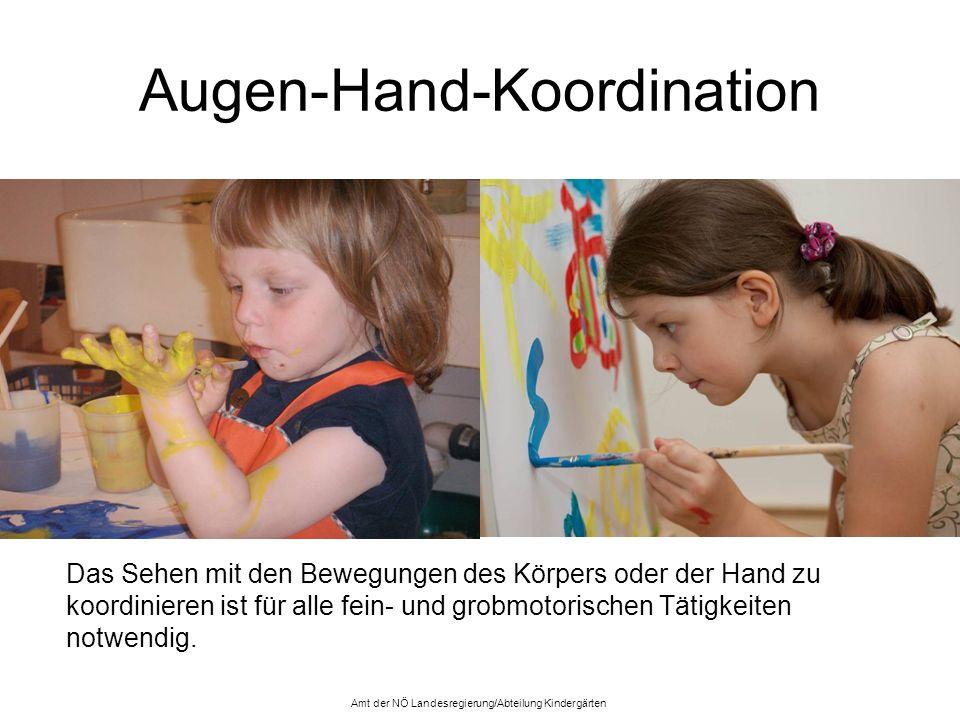 Augen-Hand-Koordination Das Sehen mit den Bewegungen des Körpers oder der Hand zu koordinieren ist für alle fein- und grobmotorischen Tätigkeiten notw