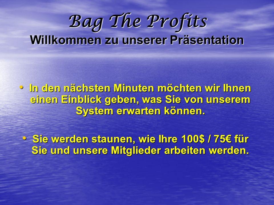 Bag The Profits Willkommen zu unserer Präsentation In den nächsten Minuten möchten wir Ihnen einen Einblick geben, was Sie von unserem System erwarten