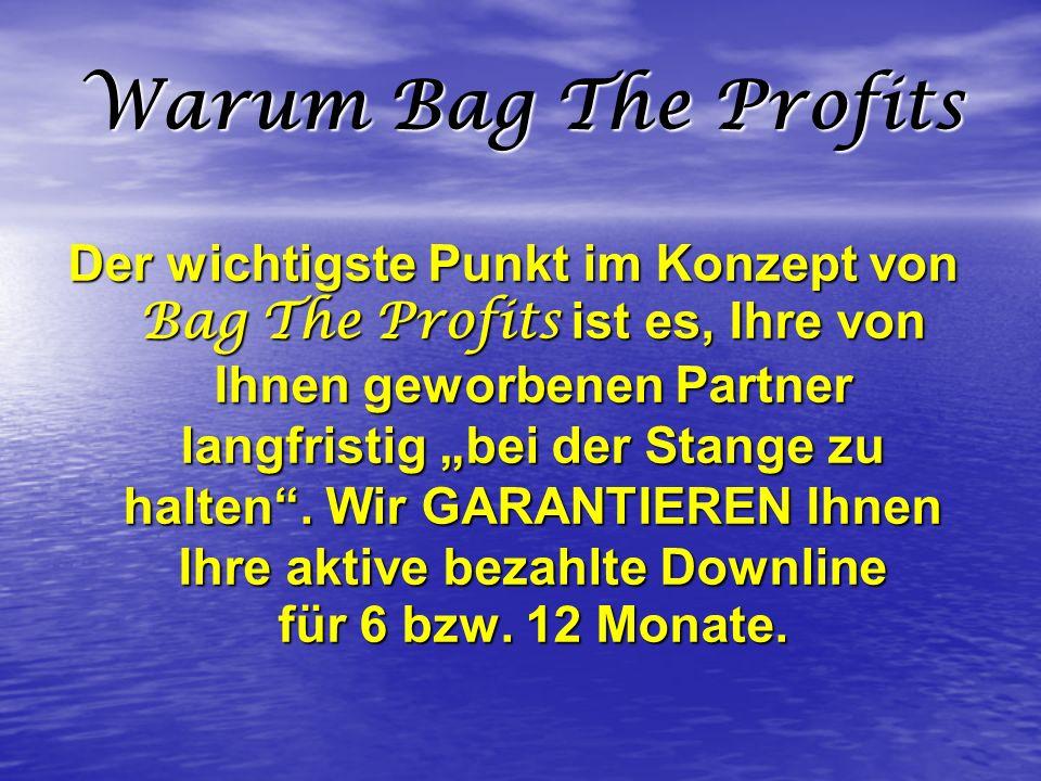 Warum Bag The Profits Der wichtigste Punkt im Konzept von Bag The Profits ist es, Ihre von Ihnen geworbenen Partner langfristig bei der Stange zu halt
