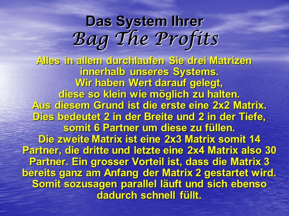 Das System Ihrer Bag The Profits Alles in allem durchlaufen Sie drei Matrizen innerhalb unseres Systems. Wir haben Wert darauf gelegt, diese so klein