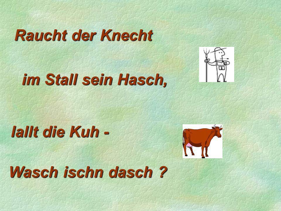 Raucht der Knecht lallt die Kuh - im Stall sein Hasch, Wasch ischn dasch ?