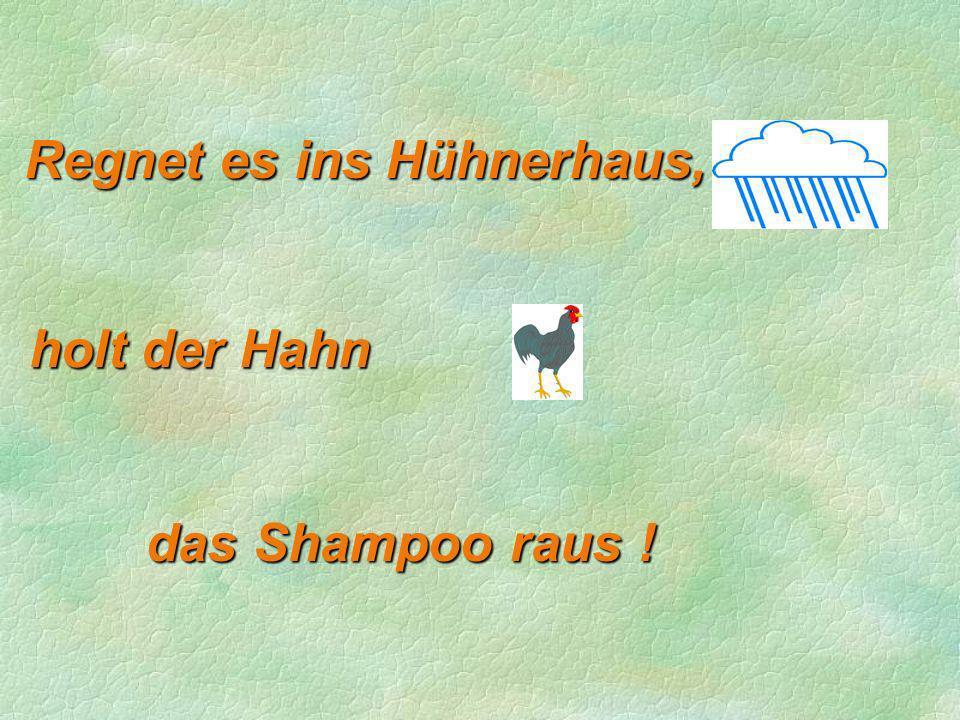 Regnet es ins Hühnerhaus, holt der Hahn das Shampoo raus !