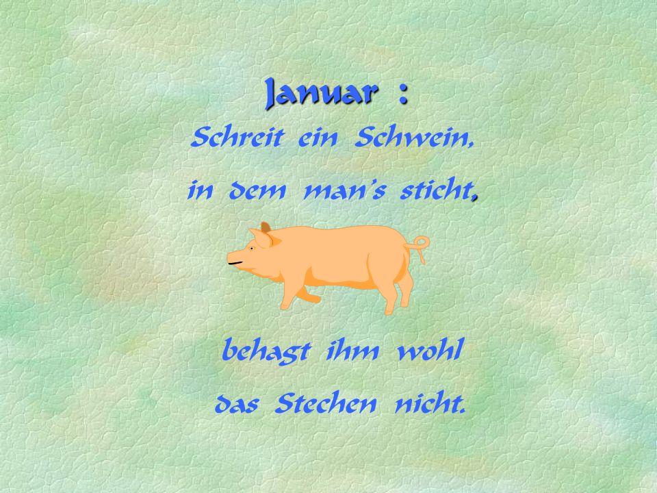 Januar : Schreit ein Schwein, in dem man's, sticht, behagt ihm wohl das Stechen nicht.