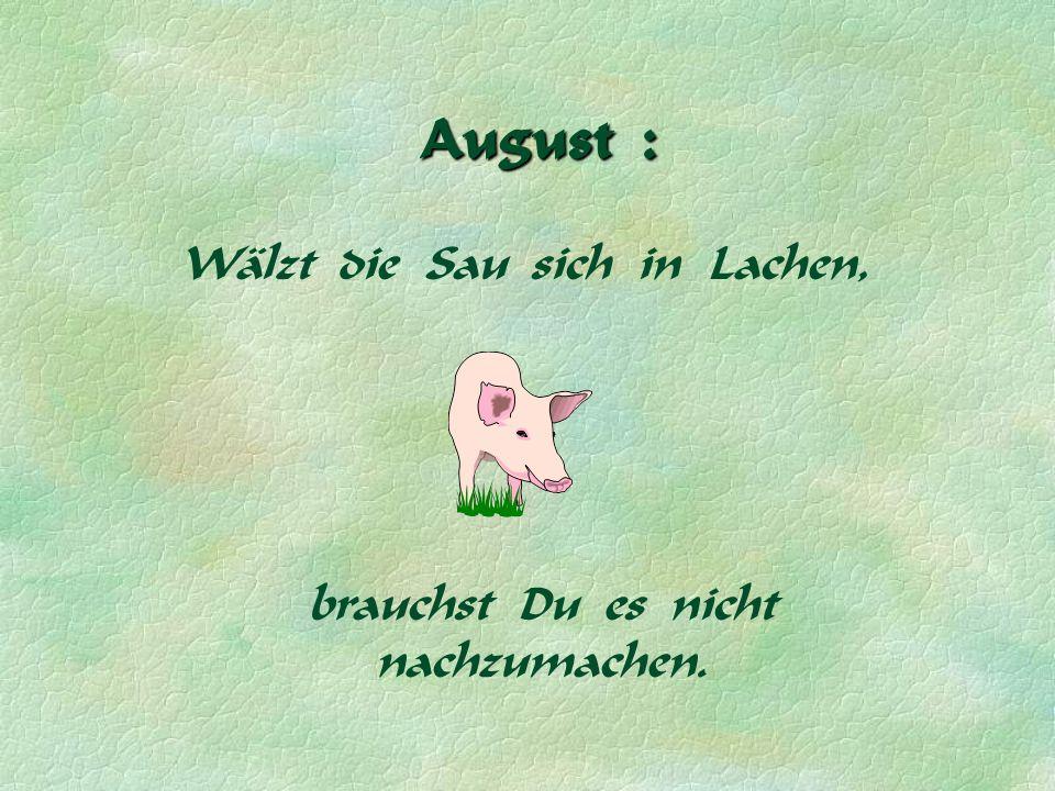 August : Wälzt die Sau sich in Lachen, brauchst Du es nicht nachzumachen.