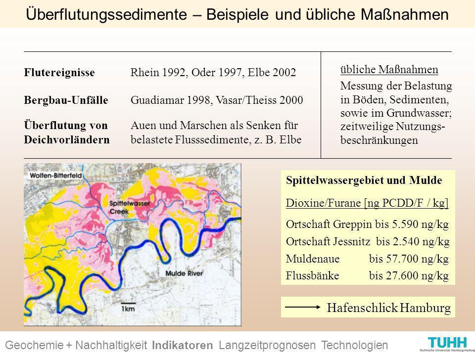 Überflutung von Deichvorländern Bergbau-Unfälle übliche Maßnahmen Messung der Belastung in Böden, Sedimenten, sowie im Grundwasser; zeitweilige Nutzun