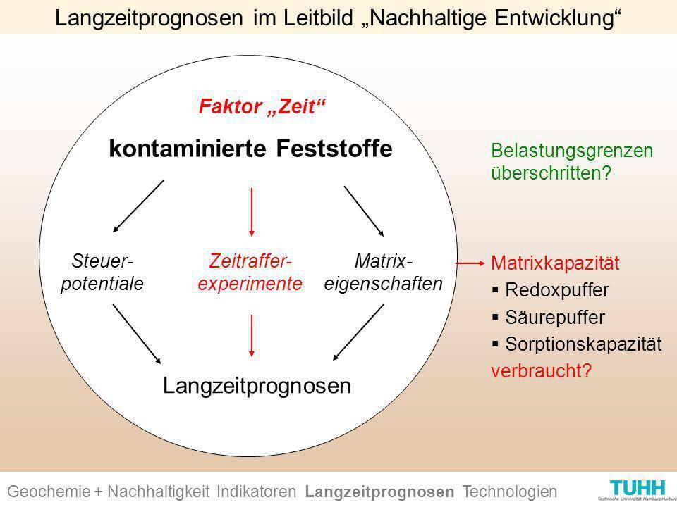 Langzeitprognosen kontaminierte Feststoffe Faktor Zeit Zeitraffer- experimente Belastungsgrenzen überschritten? Geochemie + Nachhaltigkeit Indikatoren