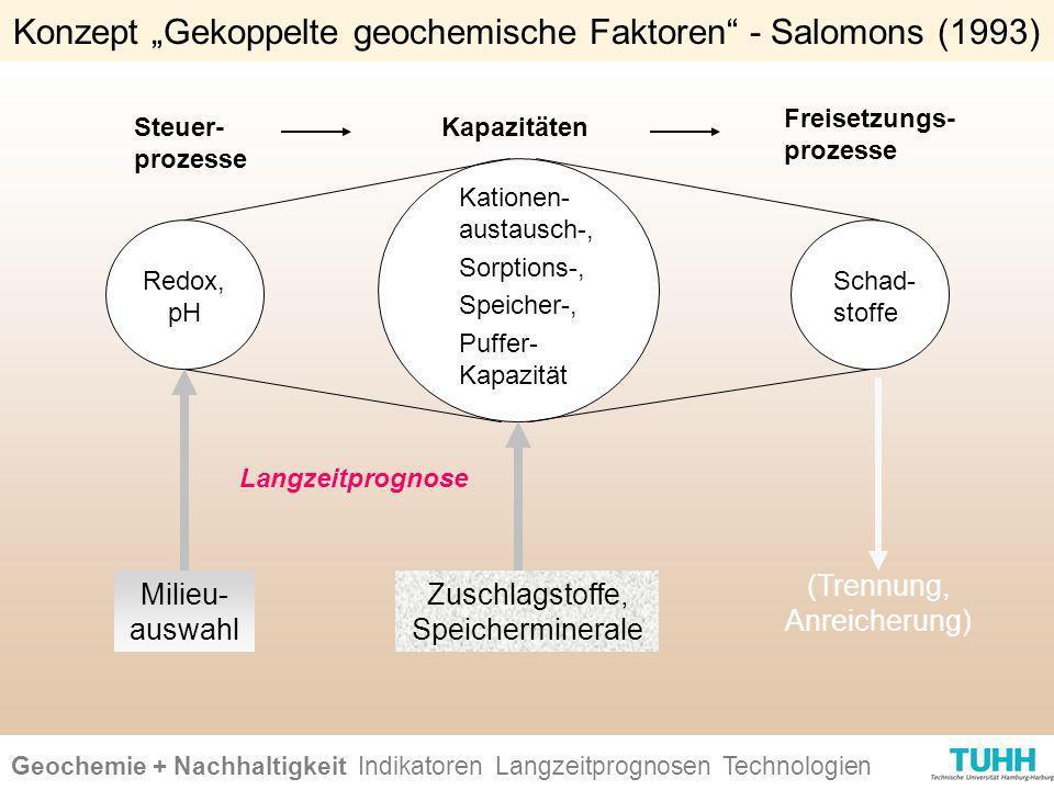 Geochemie + Nachhaltigkeit Indikatoren Ursachen + Wirkungen Technologien Kapazitäten Freisetzungs- prozesse Steuer- prozesse Redox, pH Kationen- austa