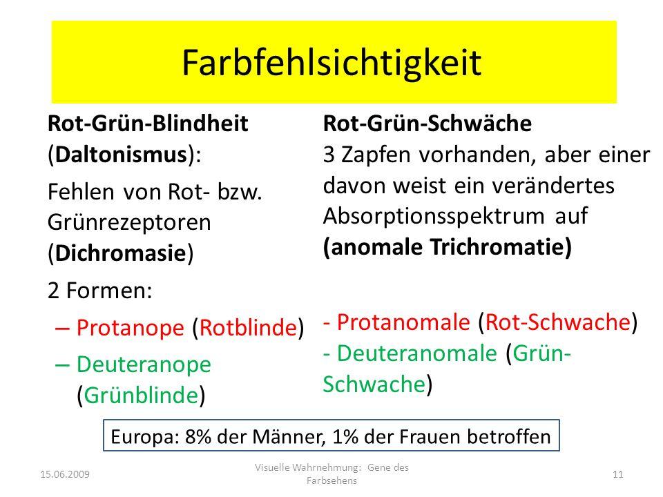 Farbfehlsichtigkeit Rot-Grün-Blindheit (Daltonismus): Fehlen von Rot- bzw. Grünrezeptoren (Dichromasie) 2 Formen: – Protanope (Rotblinde) – Deuteranop