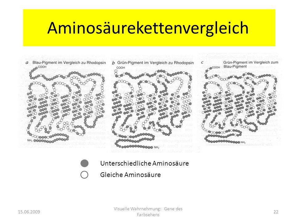 Aminosäurekettenvergleich Unterschiedliche Aminosäure Gleiche Aminosäure 15.06.200922 Visuelle Wahrnehmung: Gene des Farbsehens