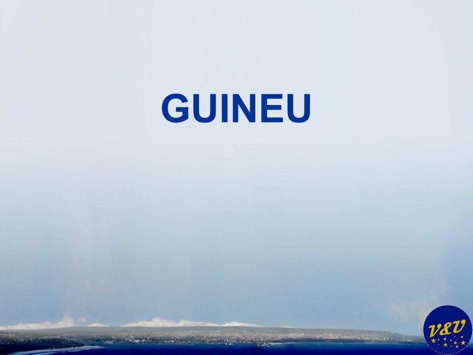 GUINEU.