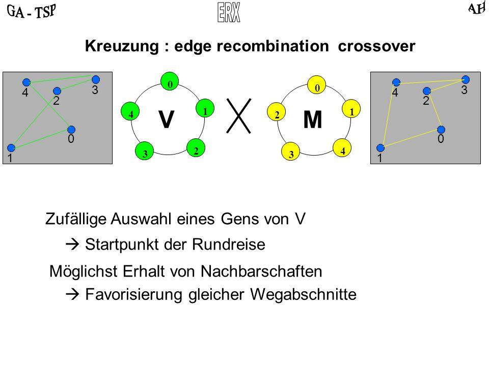 0 2 4 3 1 0 4 2 3 1 VM Kreuzung : edge recombination crossover 0 2 3 4 1 0 2 3 4 1 Zufällige Auswahl eines Gens von V Startpunkt der Rundreise Möglichst Erhalt von Nachbarschaften Favorisierung gleicher Wegabschnitte