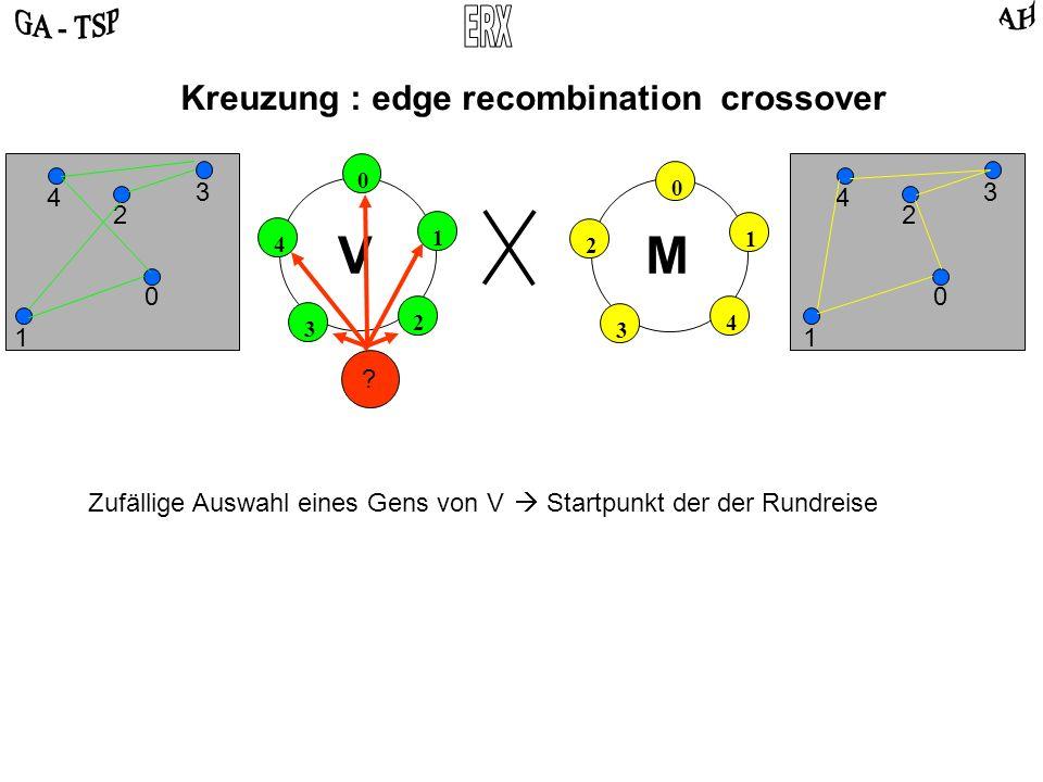 0 2 4 3 1 0 4 2 3 1 VM Kreuzung : edge recombination crossover 0 2 3 4 1 0 2 3 4 1 Zufällige Auswahl eines Gens von V Startpunkt der der Rundreise