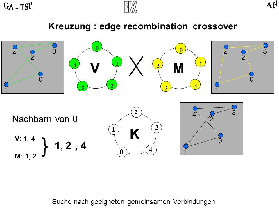 0 2 4 3 1 0 4 2 3 1 VM Kreuzung : edge recombination crossover 0 2 3 4 1 0 2 3 4 1 Suche nach geeigneten gemeinsamen Verbindungen Mögliche Schwierigkeiten: Alle Nachbarn sind bereits vergeben.