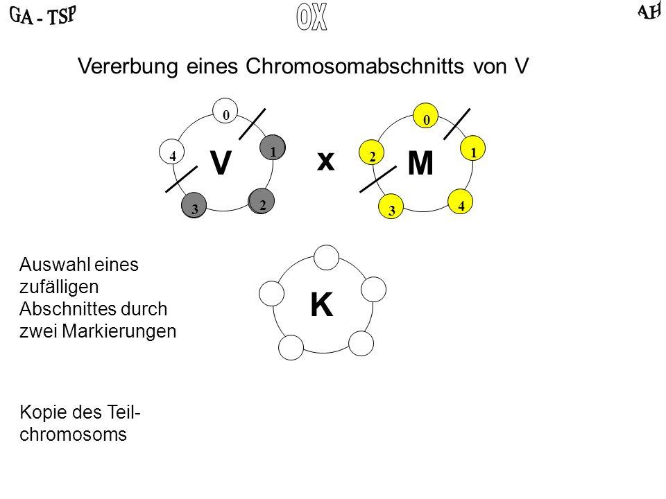 K 0 2 4 3 1 0 4 2 3 1 VM x Auswahl eines zufälligen Abschnittes durch zwei Markierungen Vererbung eines Chromosomabschnitts von V Kopie des Teil- chromosoms 1 2 3