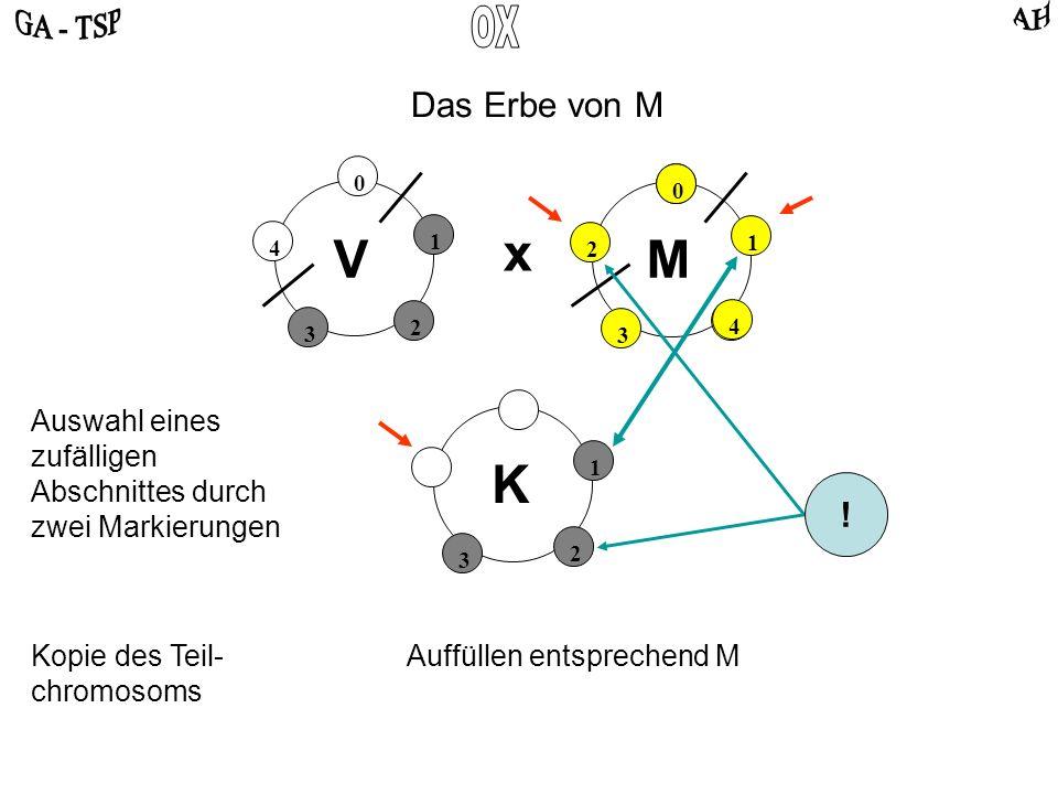 2 3 1 K 0 2 4 3 1 0 4 2 3 1 VM x Auswahl eines zufälligen Abschnittes durch zwei Markierungen Das Erbe von M Kopie des Teil- chromosoms Auffüllen entsprechend M .