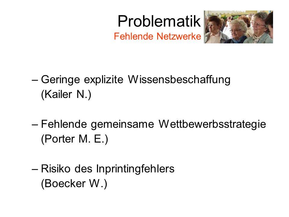 Problematik Fehlende Netzwerke –Geringe explizite Wissensbeschaffung (Kailer N.) –Fehlende gemeinsame Wettbewerbsstrategie (Porter M.