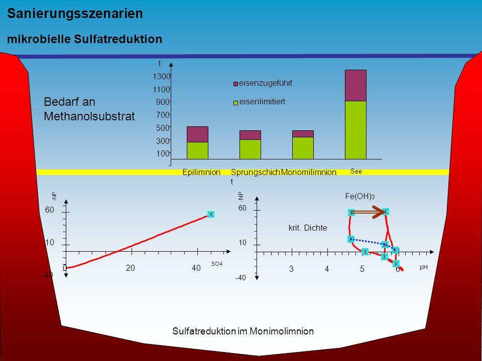 Sanierungsszenarien mikrobielle Sulfatreduktion -40 10 60 0 2040 SO4 -NP -40 10 60 3456 krit. Dichte pH -NP Fe(OH) 3 100 300 500 700 900 1100 1300 t e