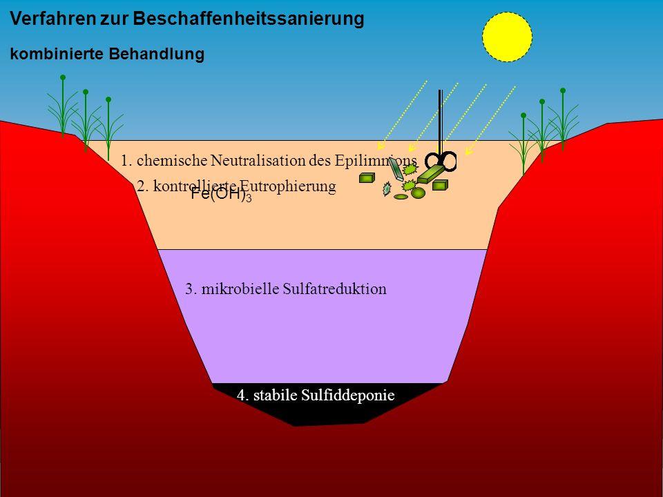 1. chemische Neutralisation des Epilimnions Verfahren zur Beschaffenheitssanierung kombinierte Behandlung Fe(OH) 3 2. kontrollierte Eutrophierung 3. m