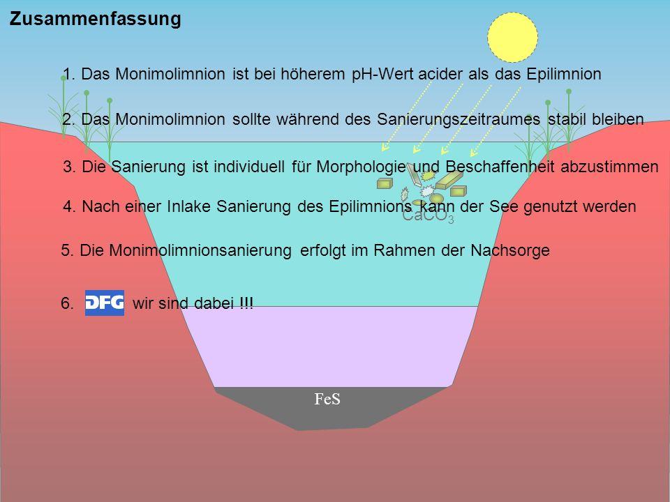 FeS CaCO 3 Zusammenfassung 1. Das Monimolimnion ist bei höherem pH-Wert acider als das Epilimnion 2. Das Monimolimnion sollte während des Sanierungsze
