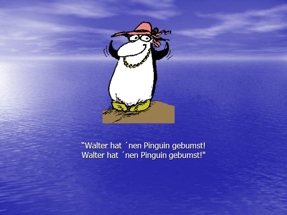 Walter hat ´nen Pinguin gebumst! Walter hat ´nen Pinguin gebumst!