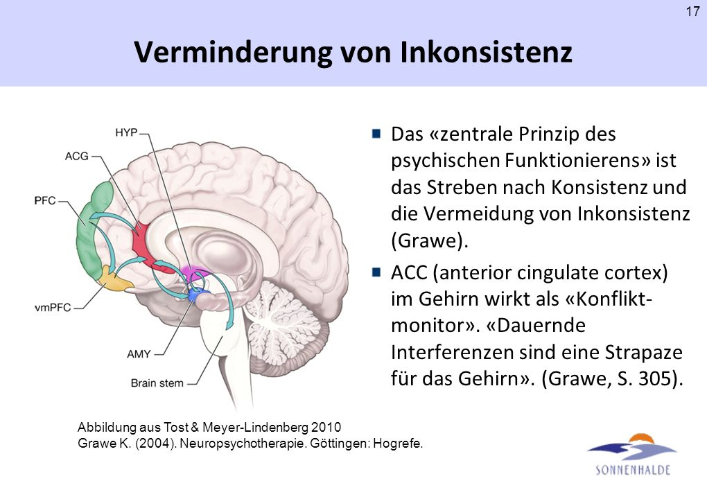 Psychophysiologische Forschung –Friedberg JP, Suchday S, Shelov DV. (2007). The impact of forgiveness on cardiovascular reactivity and recovery. Int J