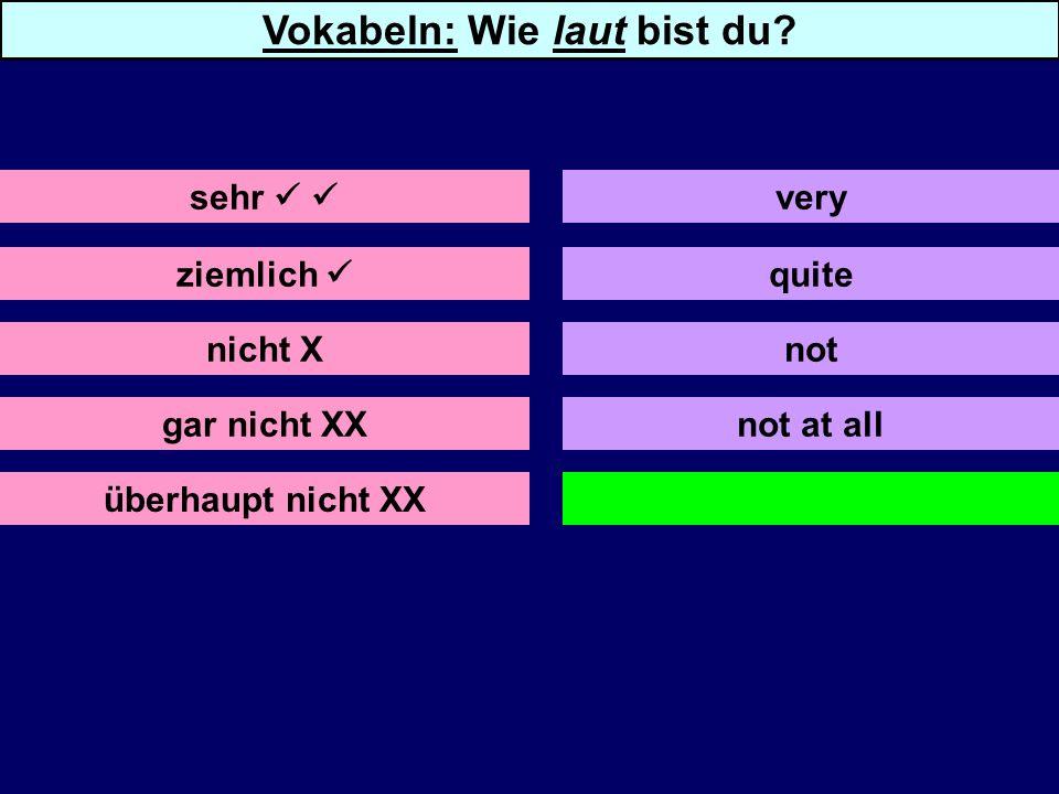 ziemlich nicht X gar nicht XX überhaupt nicht XX not not at all sehr very Vokabeln: Wie laut bist du