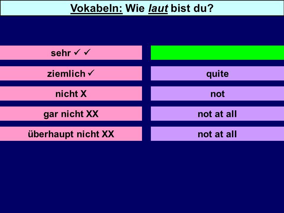 ziemlich nicht X gar nicht XX überhaupt nicht XX quite not not at all sehr very Vokabeln: Wie laut bist du