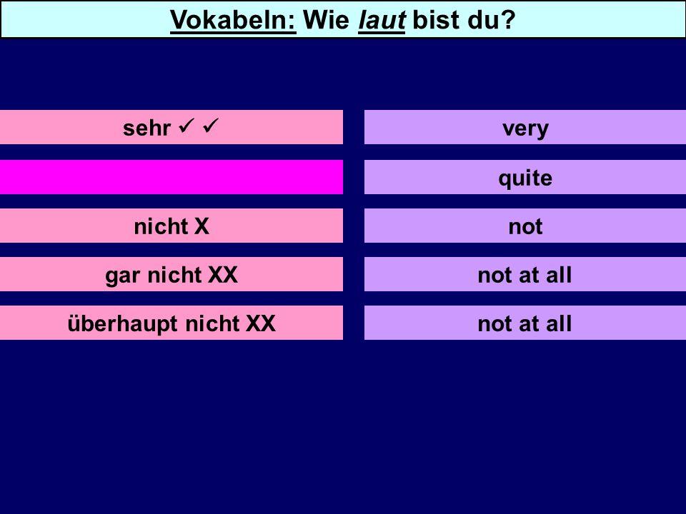 ziemlich nicht X gar nicht XX quite not not at all sehr very Vokabeln: Wie laut bist du