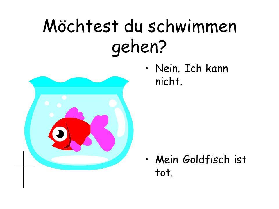 Möchtest du schwimmen gehen? Nein. Ich kann nicht. Mein Goldfisch ist tot.