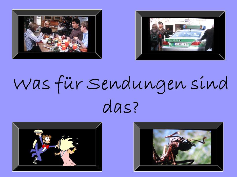 Reality-Fernsehen: Deutschland sucht den Superstar! Pop Idol