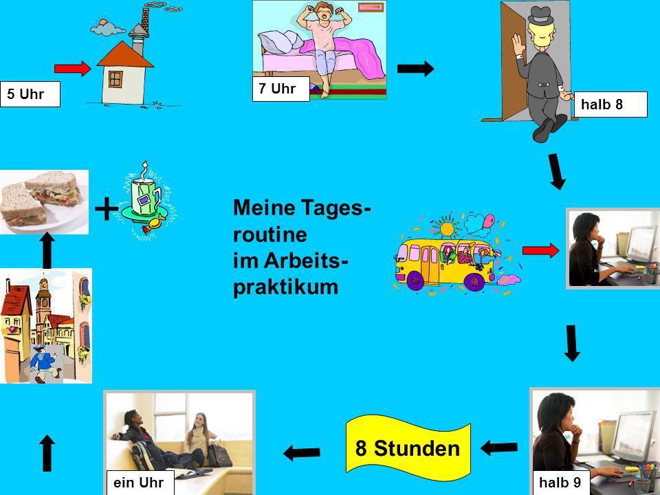 Meine Tages- routine im Arbeits- praktikum 7 Uhr halb 9 8 Stunden ein Uhr + halb 8 5 Uhr