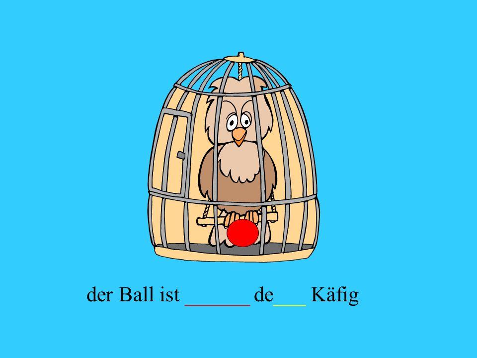 der Ball ist ______ de___ Käfig
