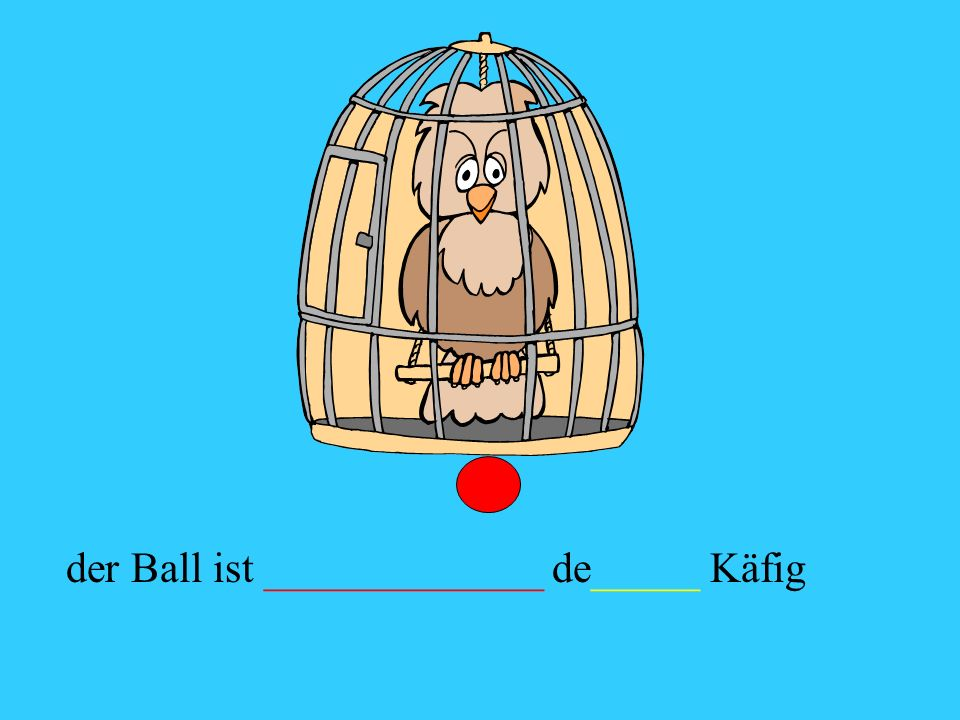 der Ball ist _____________ de_____ Käfig