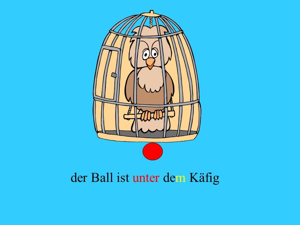der Ball ist unter dem Käfig