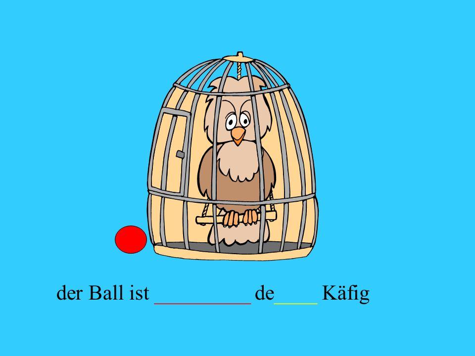 der Ball ist _________ de____ Käfig