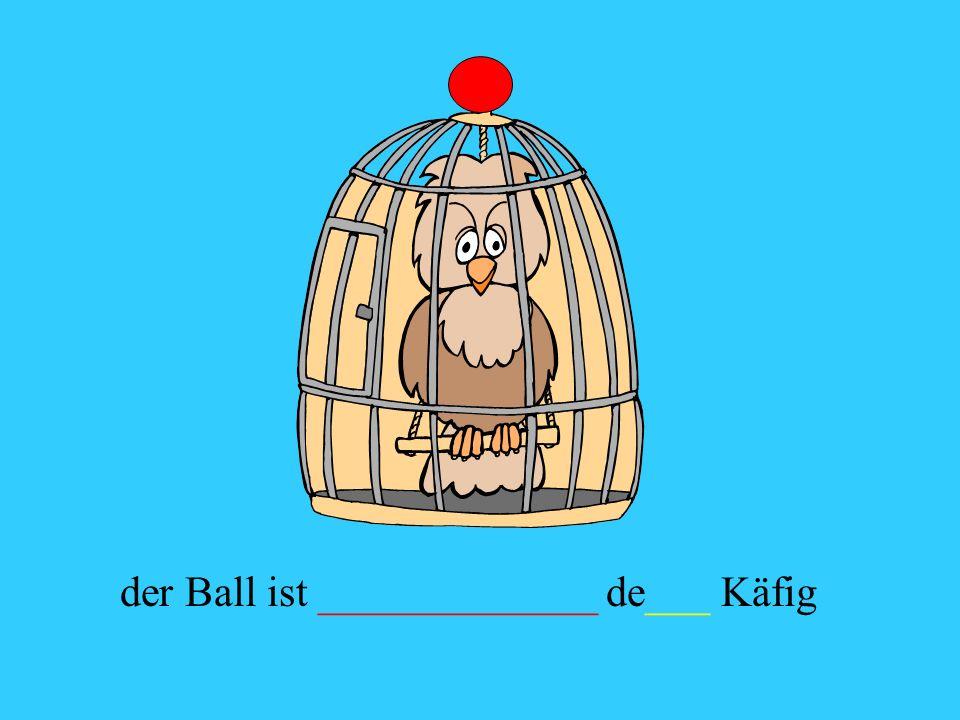 der Ball ist _____________ de___ Käfig