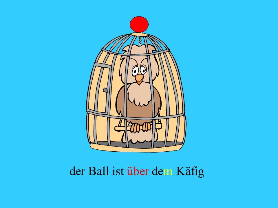 der Ball ist über dem Käfig