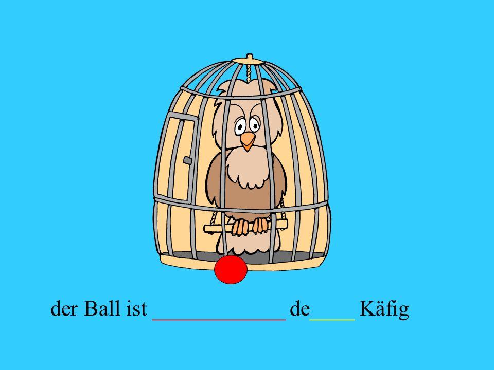 der Ball ist ____________ de____ Käfig