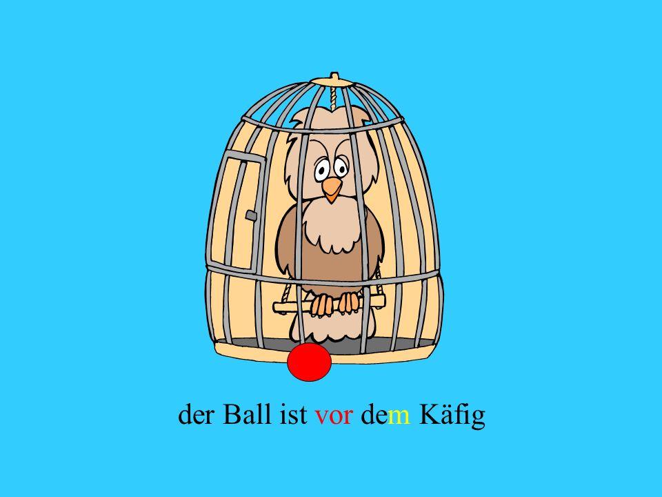 der Ball ist vor dem Käfig