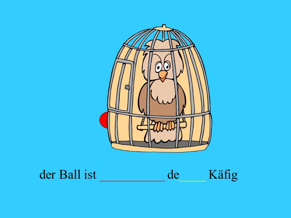 der Ball ist __________ de____ Käfig