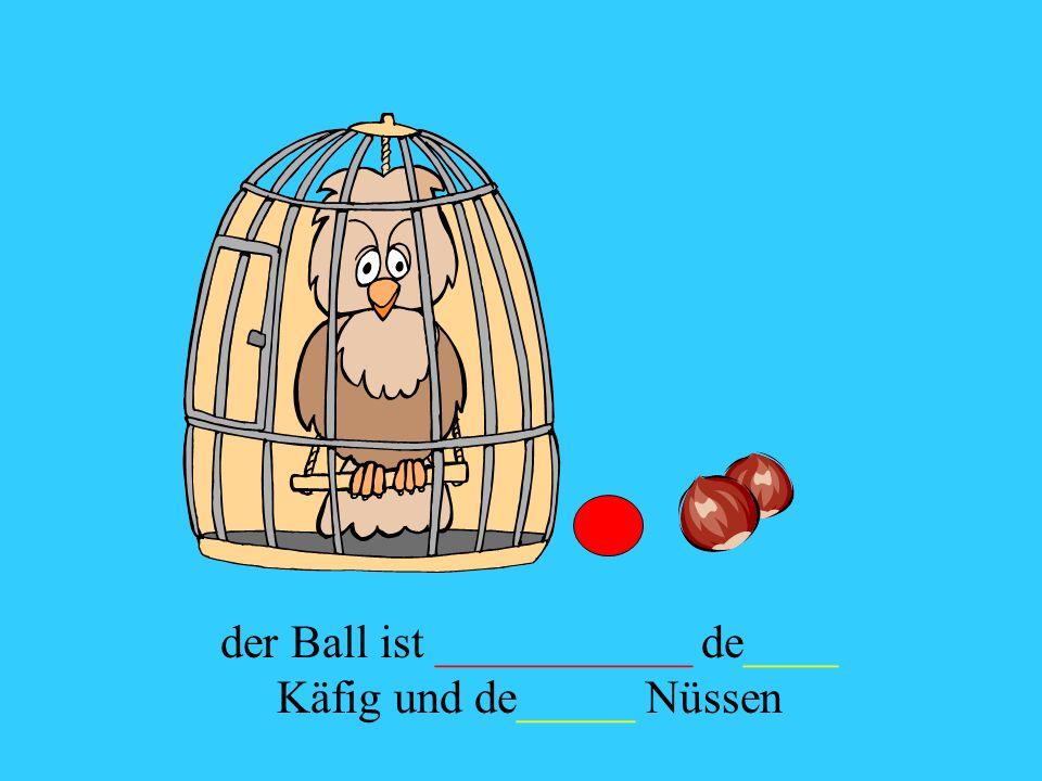der Ball ist ___________ de____ Käfig und de_____ Nüssen
