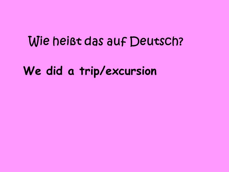 Wie heißt das auf Deutsch We did a trip/excursion