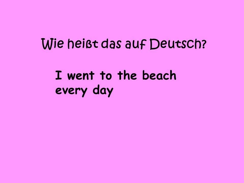 Wie heißt das auf Deutsch? I went to the beach every day