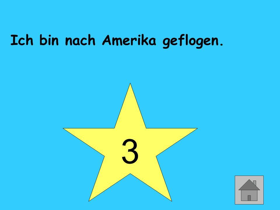 3 Ich bin nach Amerika geflogen.
