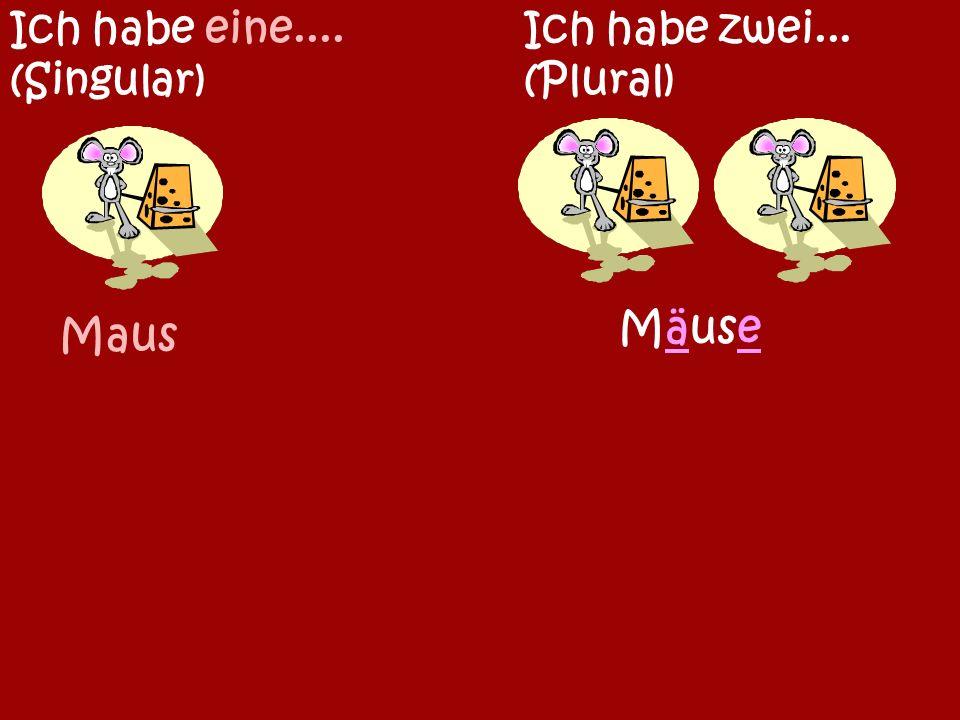 Kaninchen Meerschweinchen Ich habe ein...(Singular) Ich habe zwei...